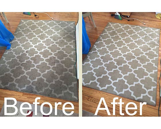 Naperville Area Rugs Cleaning Carpet And